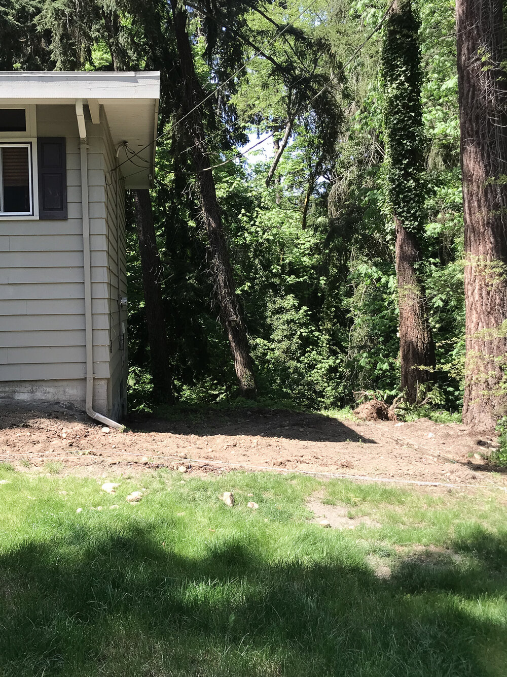 Before image - our side yard makeover with a paver and gravel walkway and patio.jpg